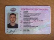 Перевод  водительских прав (простой)