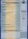 Перевод  приложение к диплому (простой)