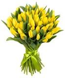 Тюльпаны упак