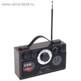 Радиоприемник БЗРП РП-304, 220Вт, USB, SD, стереозвук 1106210