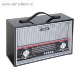 Радиоприемник БЗРП РП-313, 220Вт, USB, SD, стереозвук   1106213